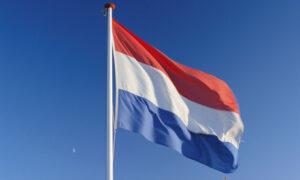Traductor holandés
