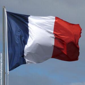 Traductor francés